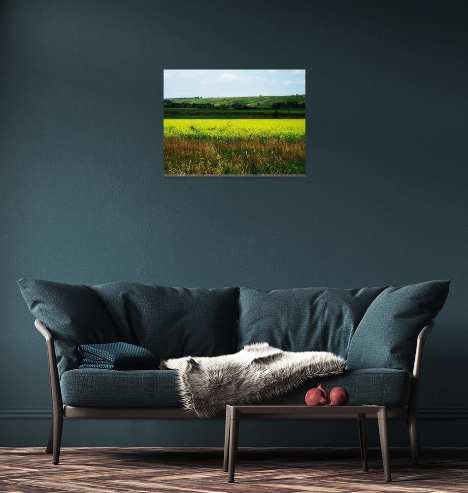 """North Dakota Landscape""  (2007) by AnthroArt"