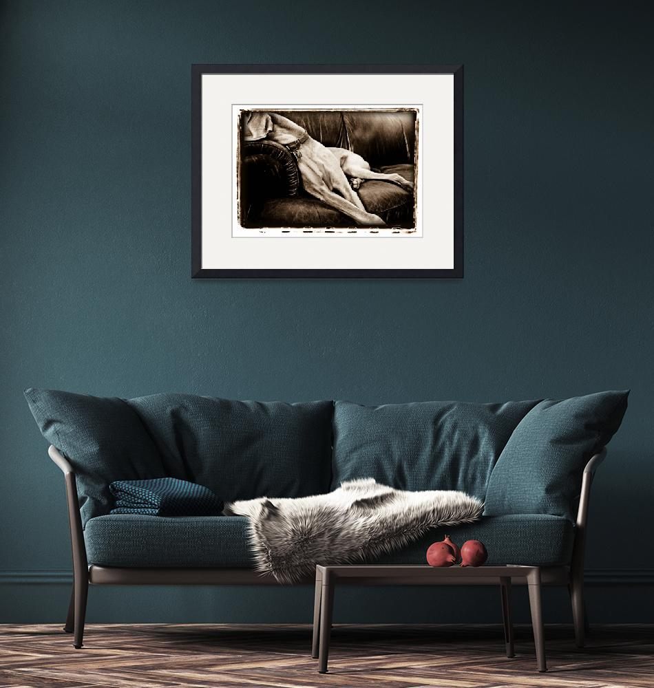 """""""Taking Over The Couch""""  (2008) by AtomicCerebellum"""