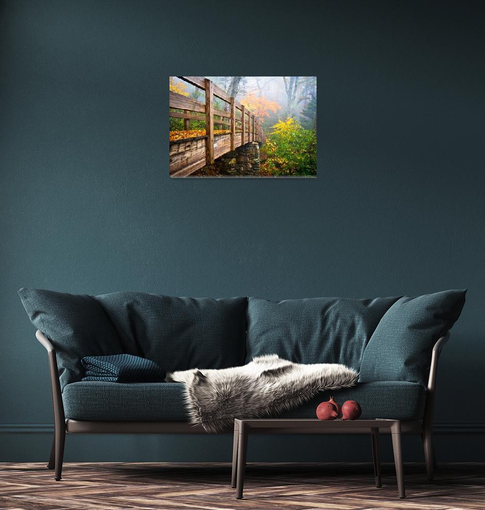 """Tanawha Trail Foot Bridge - Rough Ridge Autumn Fol""  (2011) by DAPhoto"