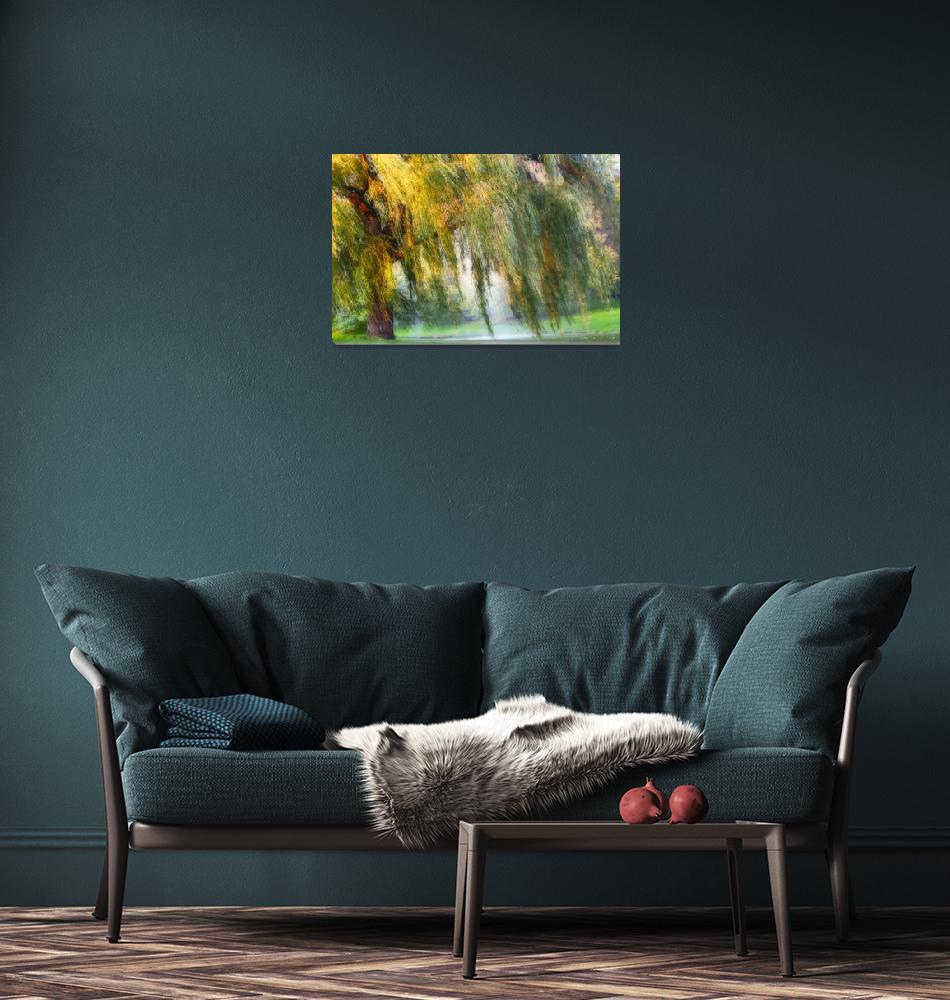 """Weeping Willow Tree Meditation Wall Art Print""  (2008) by PhotographsByCarolFAustin"