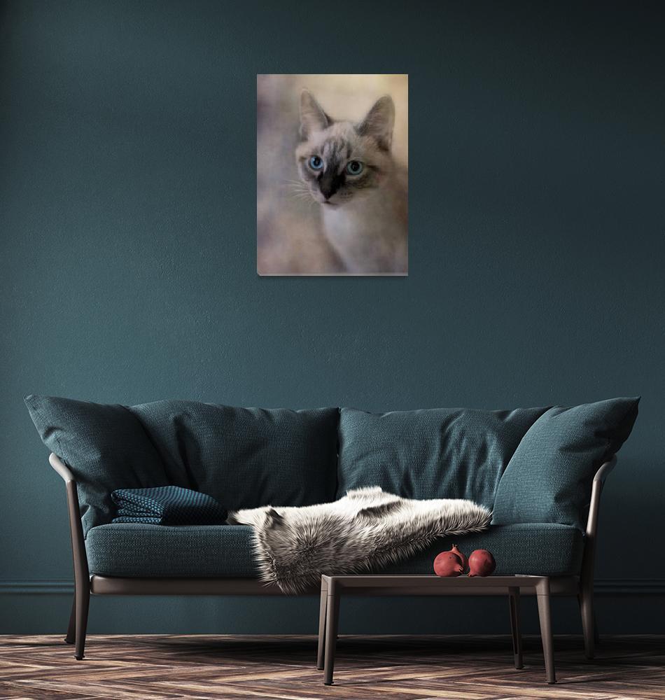 """tomcat""  by Piri"