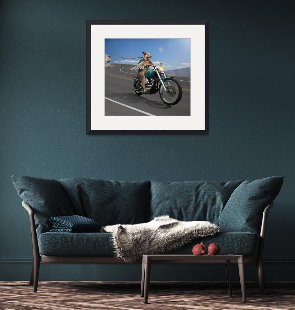 """German Shepard Dog Riding a Motorcycle""  (2010) by StephanieDRoeser"