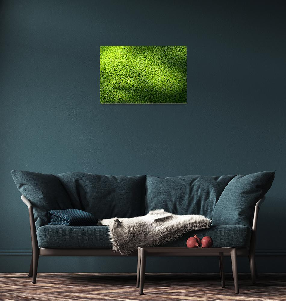 """""""Green Envy""""  (2006) by ispyimagination"""