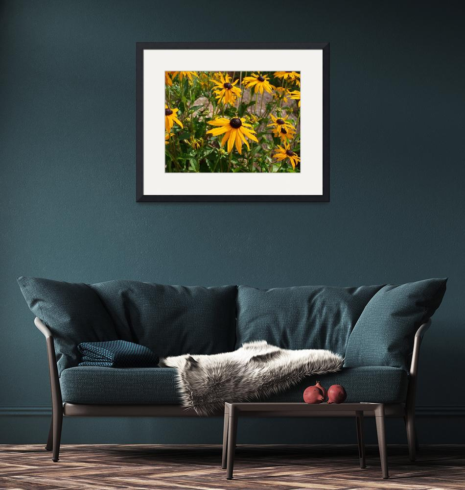 """""""Brown Eyed Susans""""  (2009) by christy"""