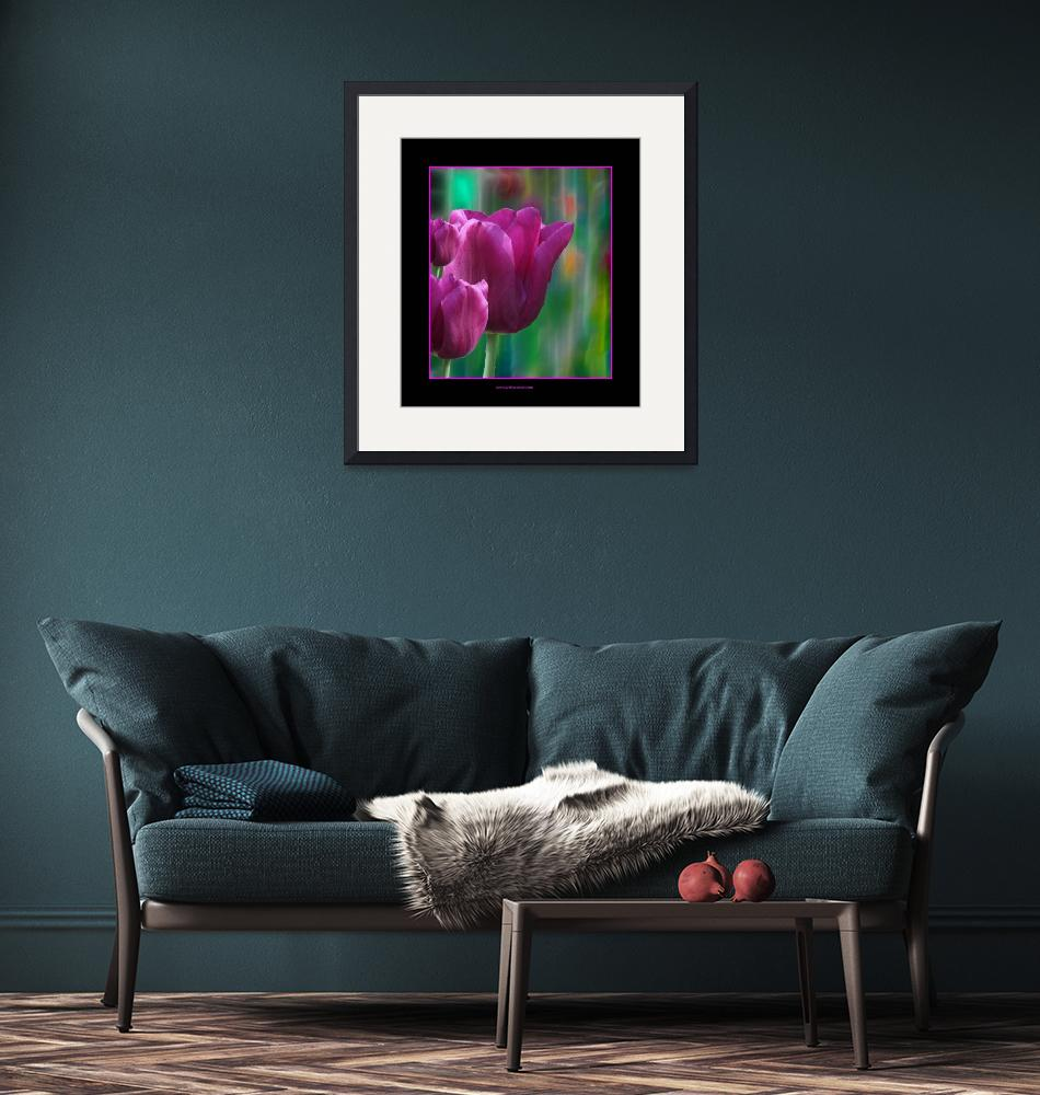 """Pink Tulips""  (2009) by artforcancer"