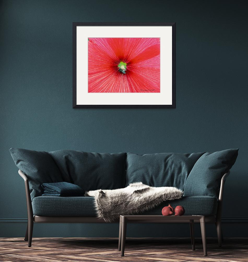 """""""Bee-Loved Red Hibiscus""""  (2009) by marshacarson"""