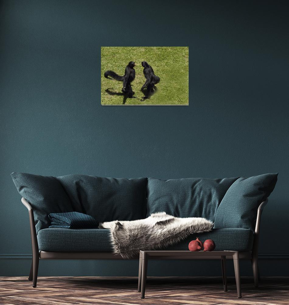 """Spider Monkey  Ateles paniscus paniscus""  (2010) by einsiedler"