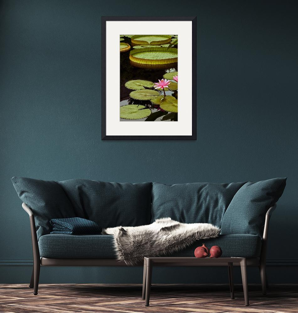 """""""Waterlilies and Platters Vertical Romance""""  (2014) by LightHeart"""
