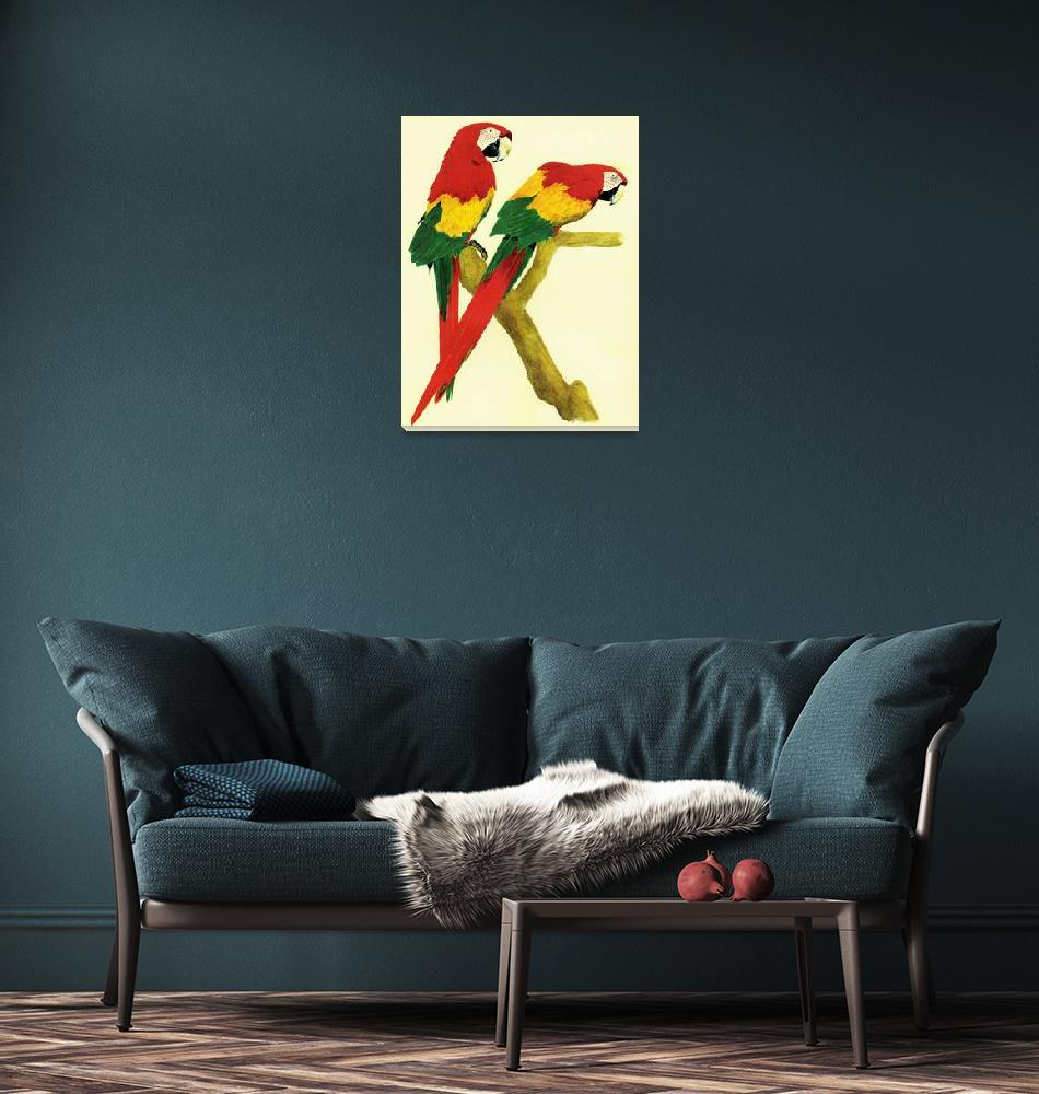 """""""Parrots""""  (2010) by vigliotti"""