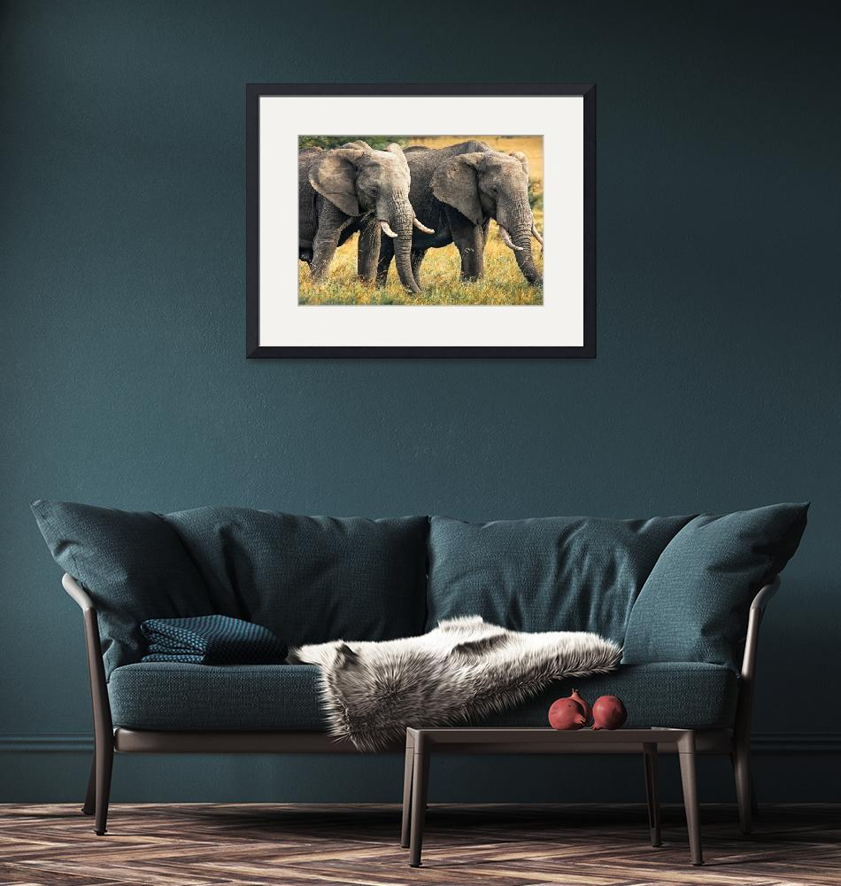 """Elephants of the Masai Mara""  (2012) by mjphoto-graphics"