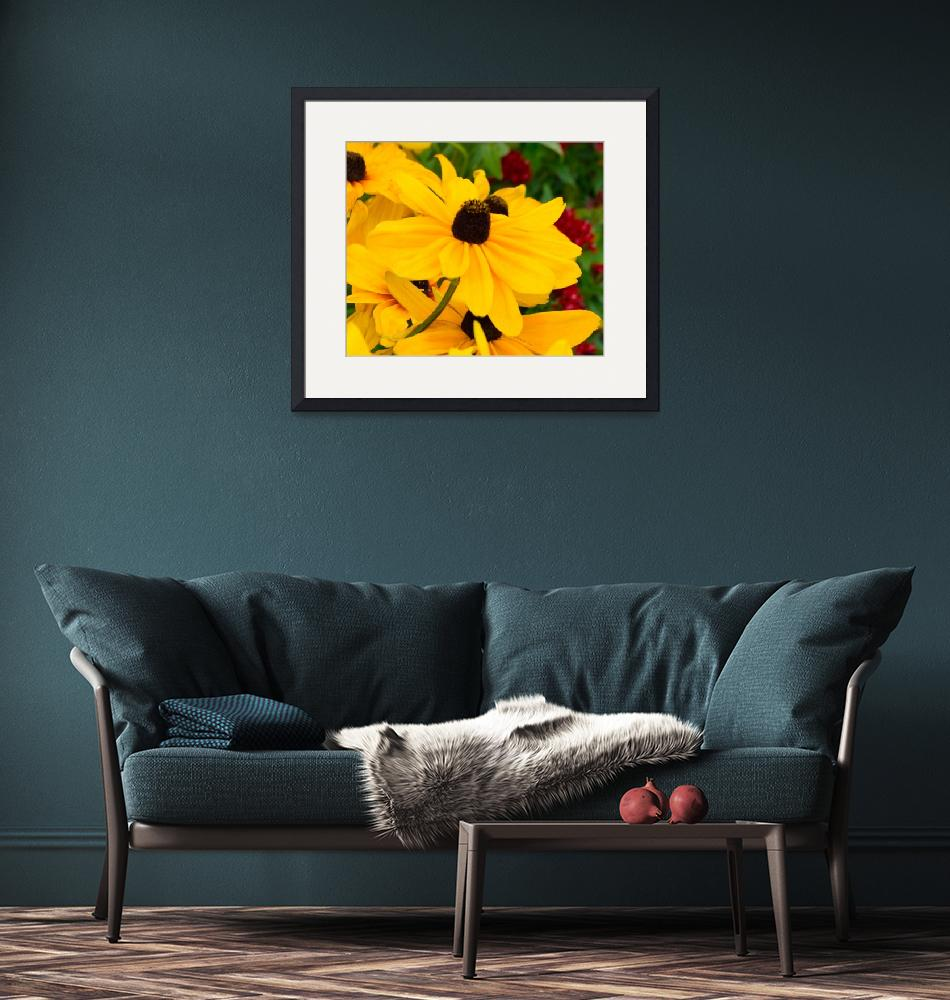 """Black-Eyed Susan Floral B62617""  (2017) by MasArtStudio"