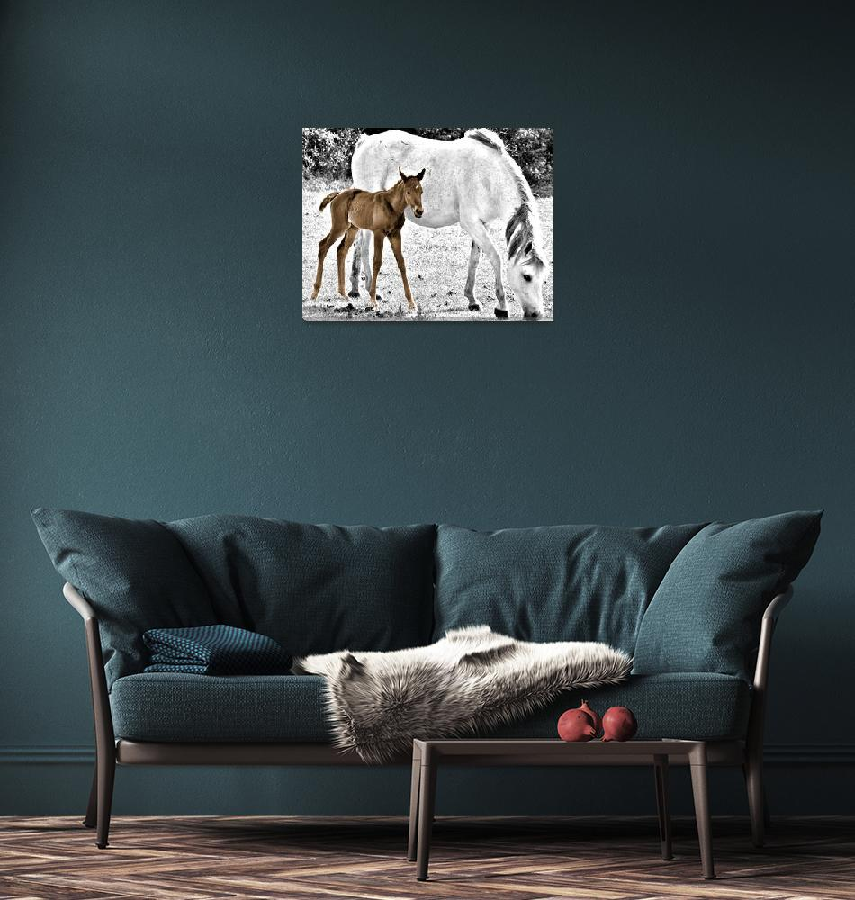 """""""Mother and Foal""""  (2010) by barbee"""