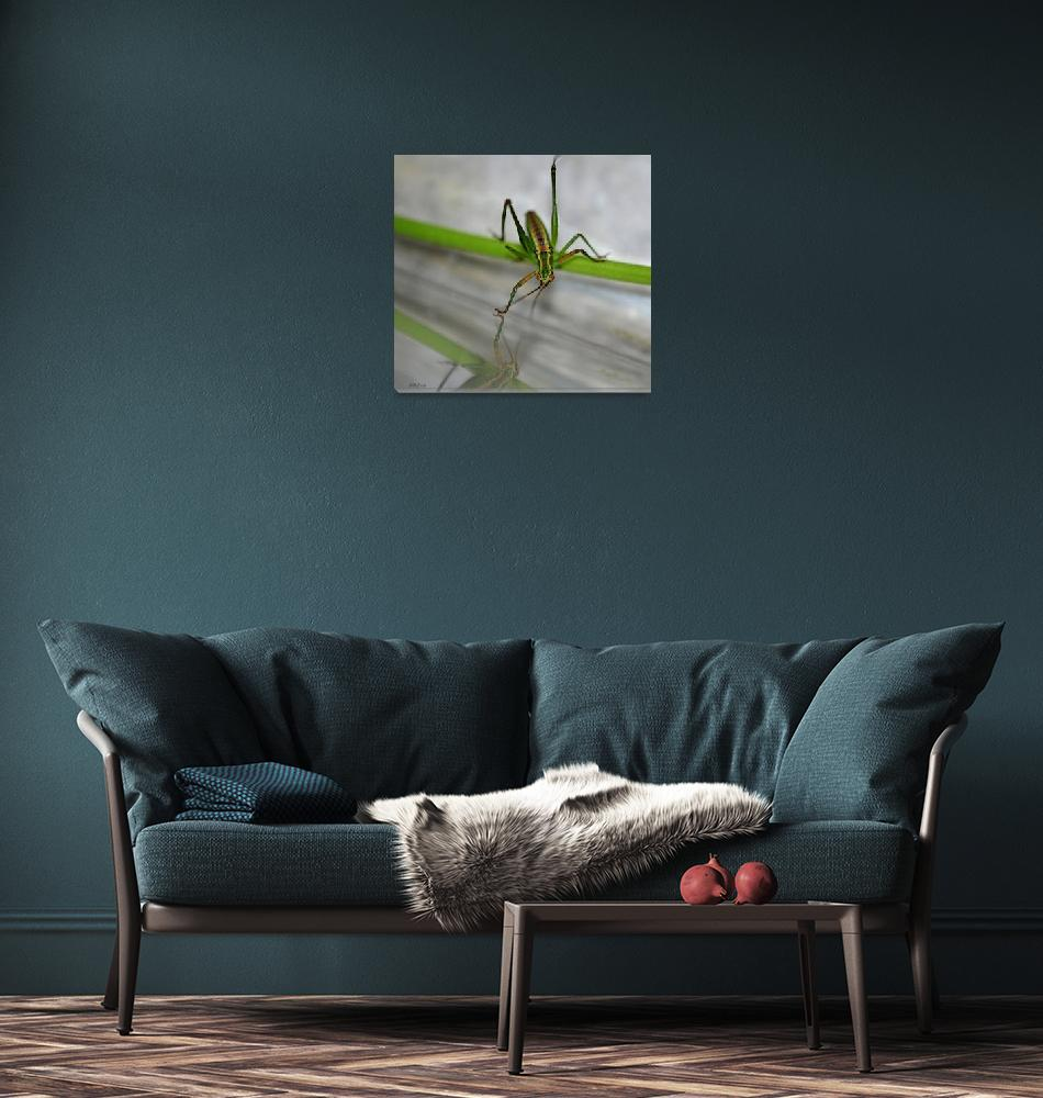"""""""Young Green Grasshopper""""  (2012) by theblueplanet"""