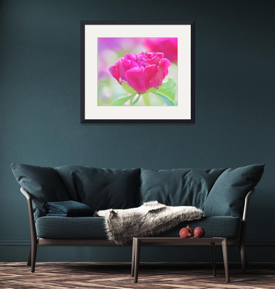 """""""Young Peony""""  (2014) by joanhan"""