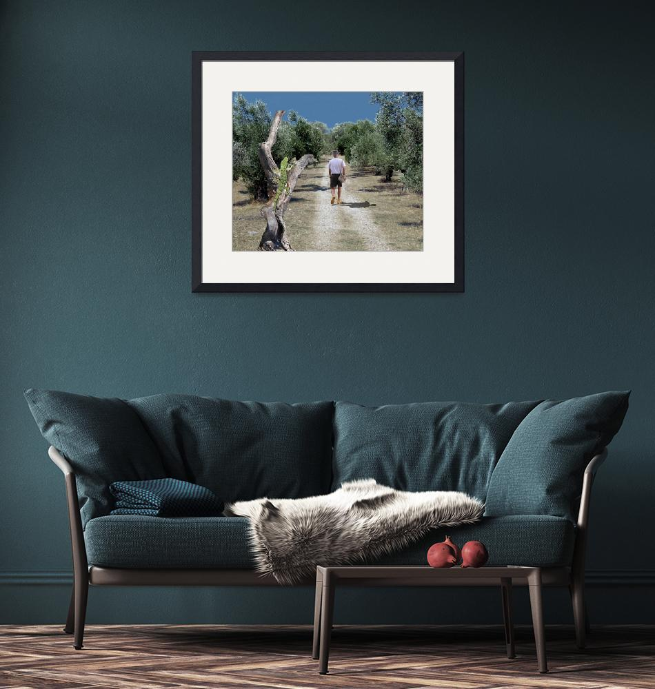 """""""Loner arrives to an olive grove""""  by PierreDumas"""