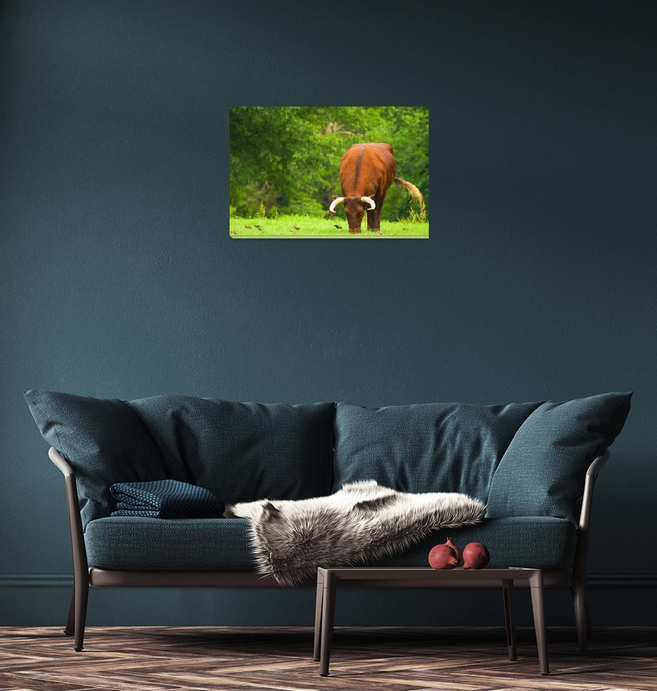 """bull bright copy""  by ssleek"