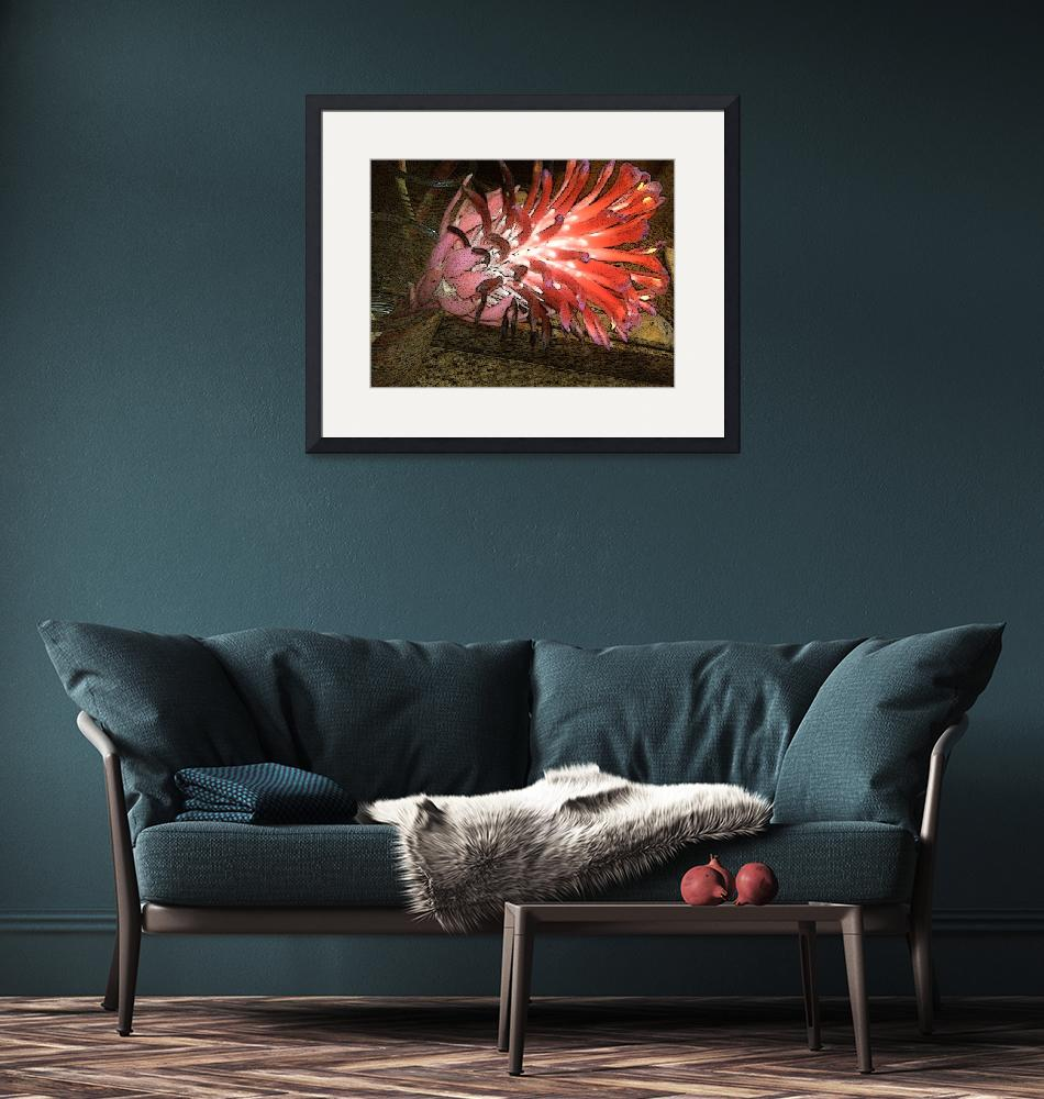 """""""Red Bromeliad on Fire""""  (2009) by heyalicia"""