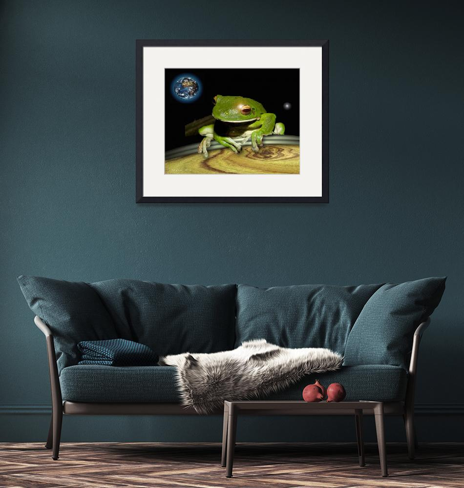 """""""the frog""""  (2008) by Arteology"""
