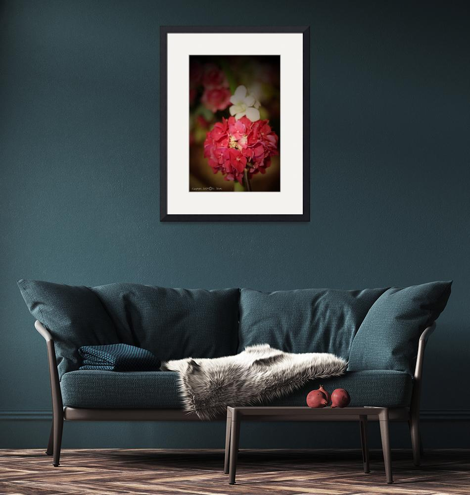 """""""Red Flowers"""" (2009) by su-graphic"""
