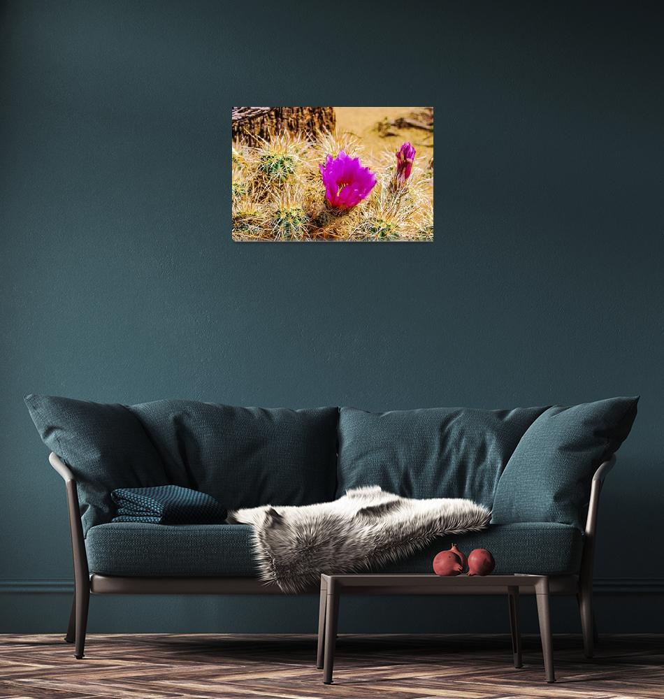 """""""Purple Cholla""""  (2014) by XrayQueen"""