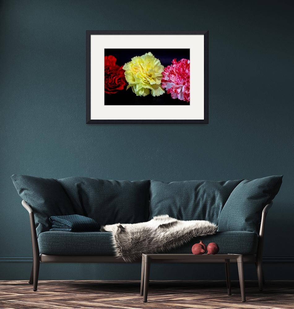"""""""Three Carnations""""  by DBell"""