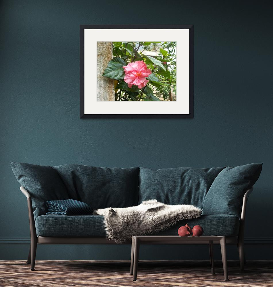 """""""Pink hibiscus flower on the tree""""  (2017) by eru017"""