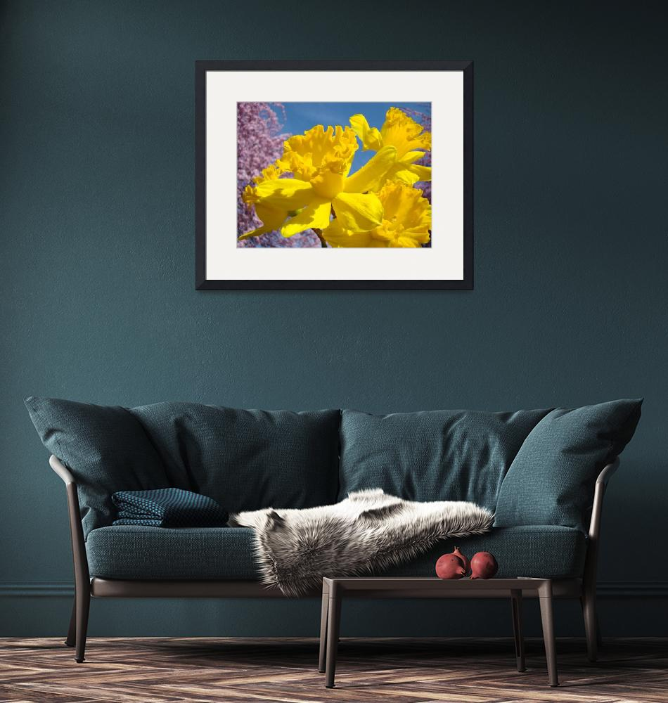 """""""Spring Daffodils Golden Yellow Flowers Art""""  (2014) by BasleeTroutman"""