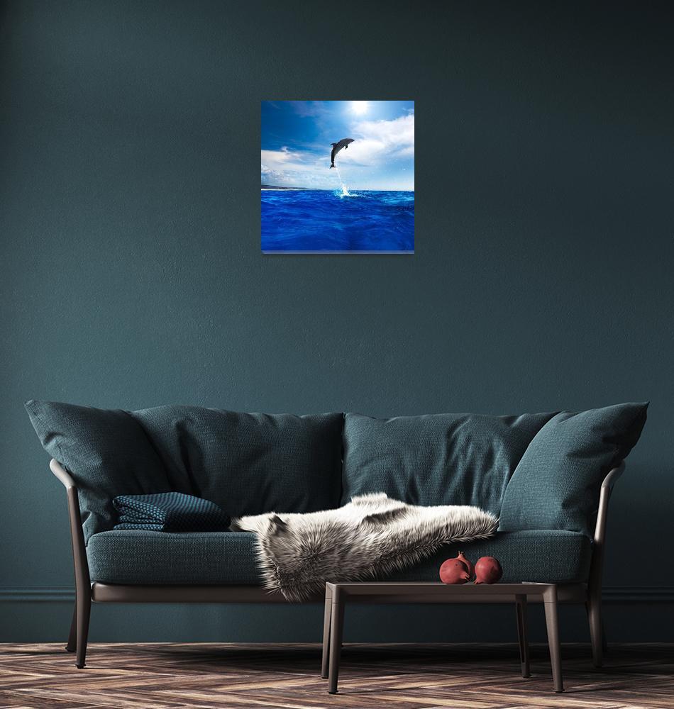 """Dolphin Photo Framed Print""  by buddakats1"