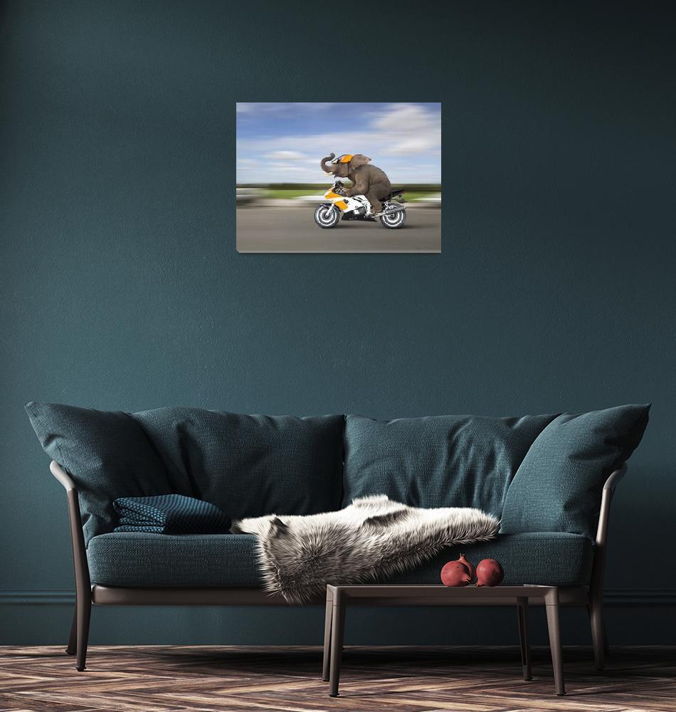 """ElephantOnMotorcycle""  (2014) by StephanieDRoeser"