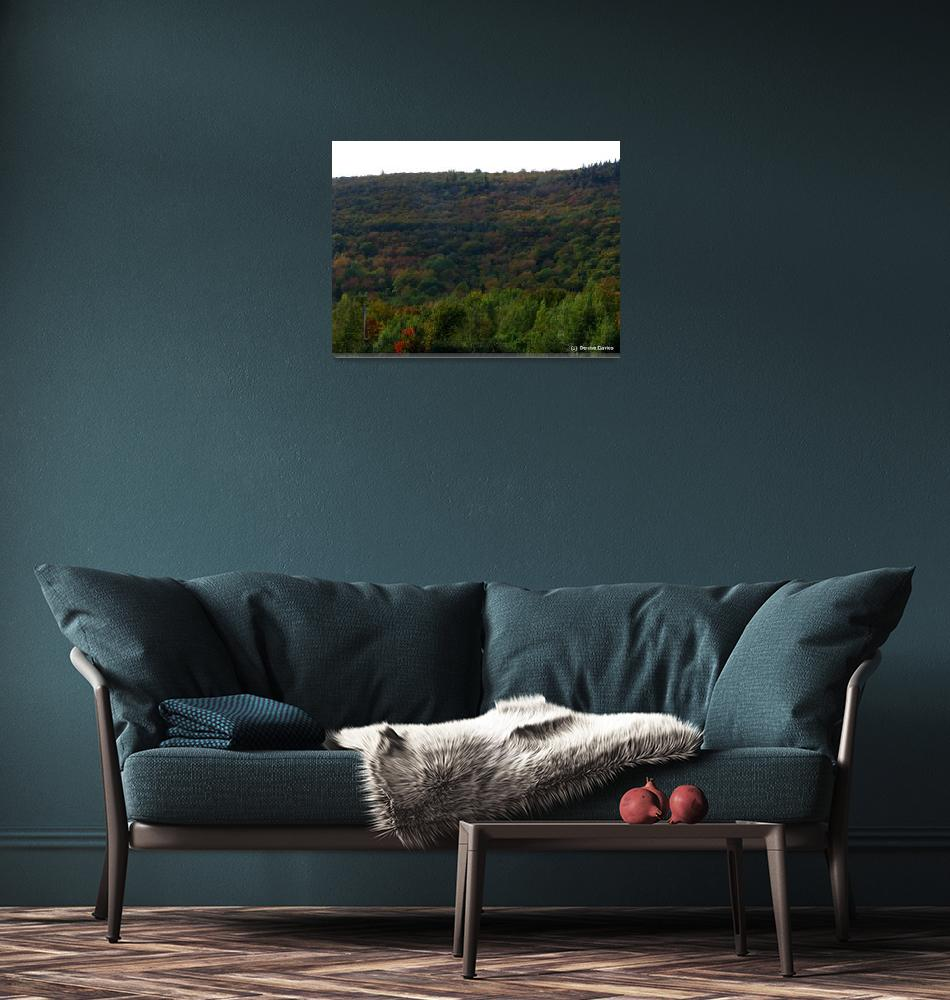 """Tartan hills IMG_3594""  by davies"