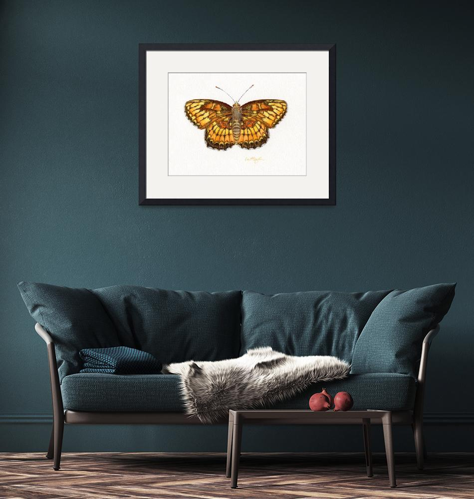 """""""Theona Checkerspot""""  (2008) by LisaMclaughlin"""