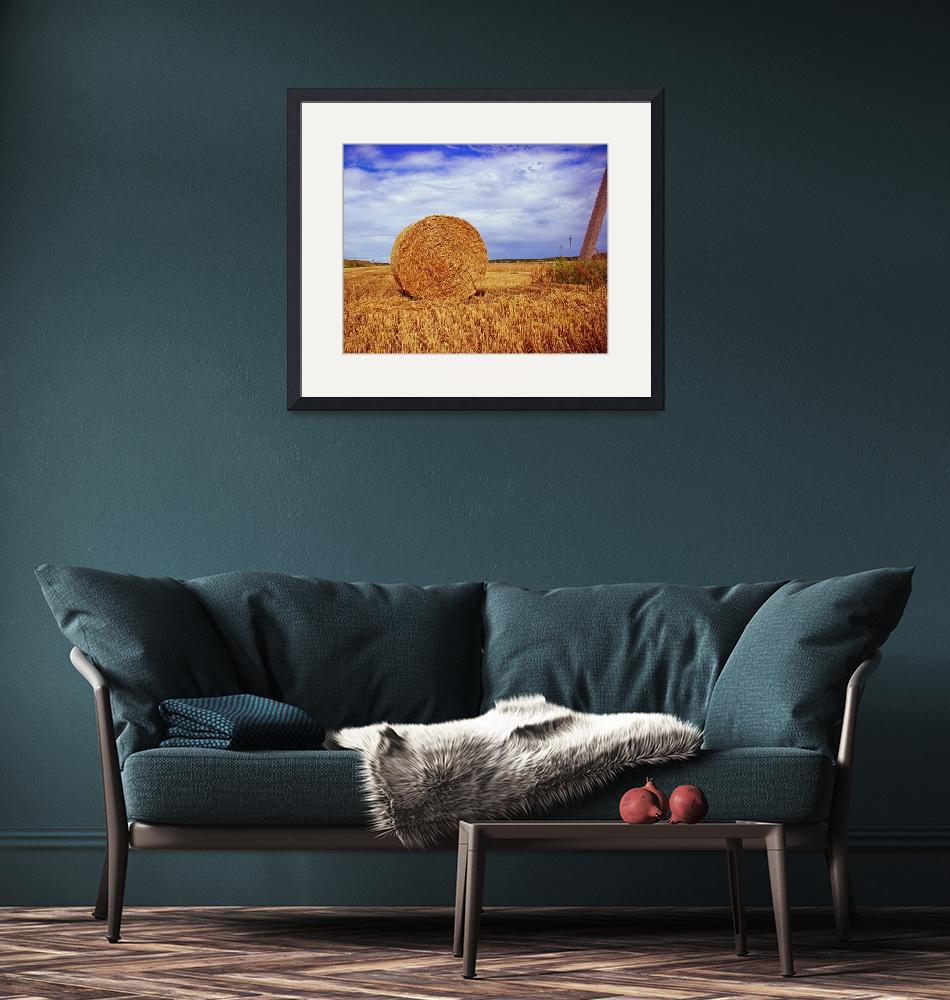 """""""Hay bale""""  (2009) by andrius"""
