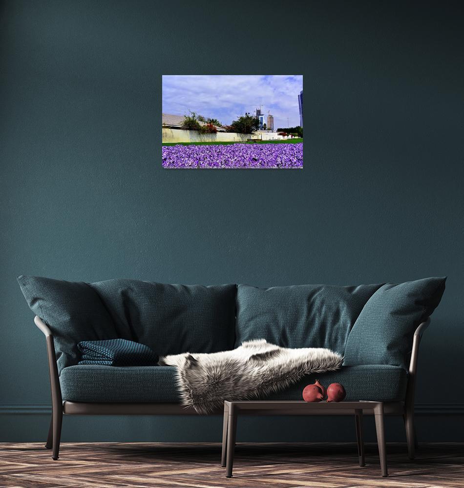 """Blooming purple petunias in Dubai (UAE)""  by NastassiaSvechka"