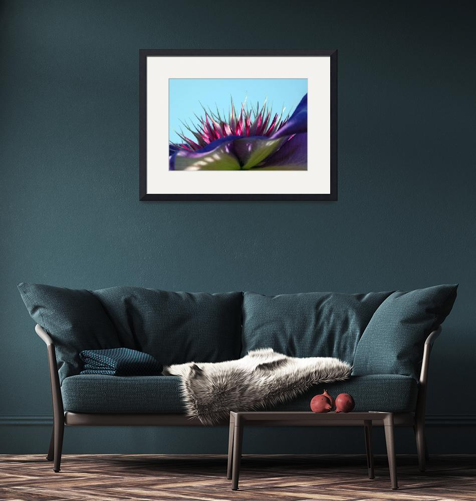 """""""Clematis""""  by BranchDesign"""