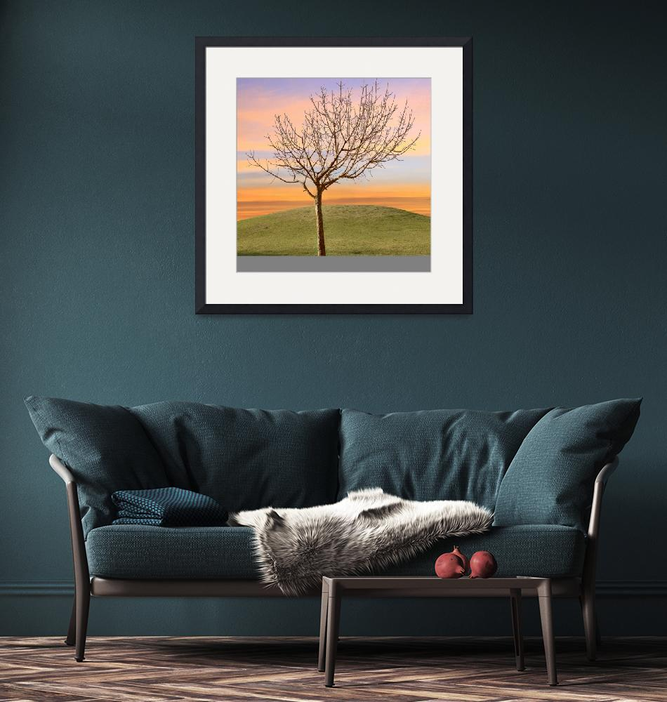 """""""Bare Tree in Sunset Solitude""""  (2013) by charker"""