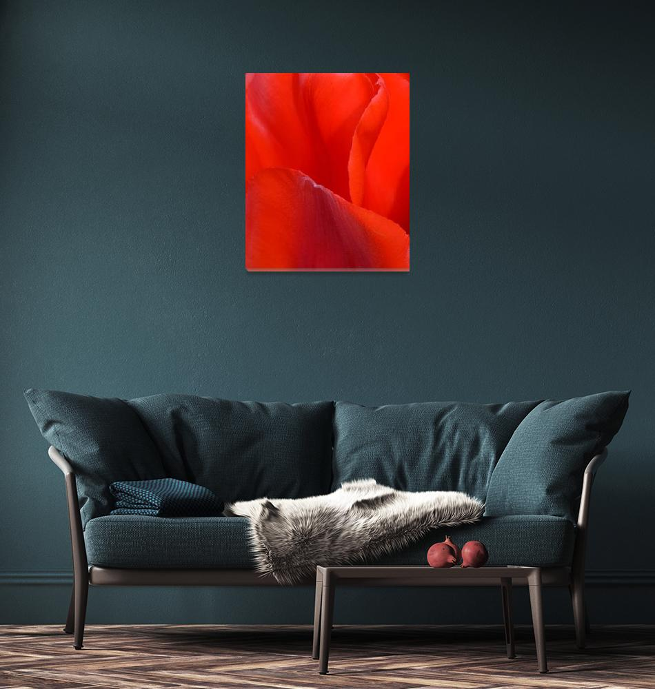 """""Red Tulip 1"" #1042315.0676""  (2015) by achimkrasenbrinkart"