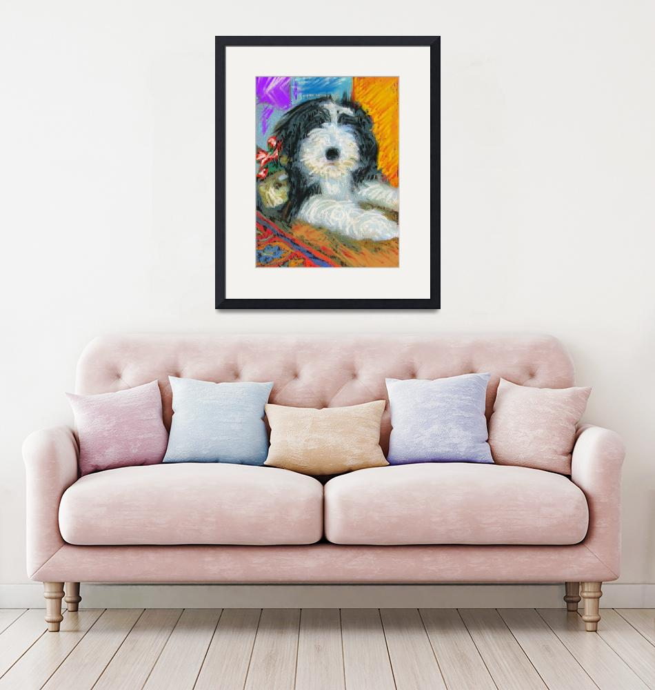 """""""Bearded Collie""""  (2009) by kring"""