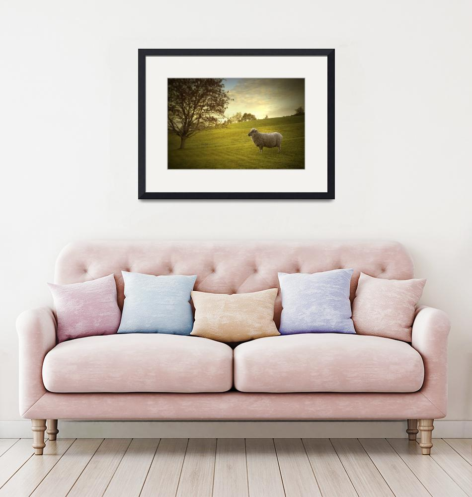 """""""Countryside Relax""""  (2019) by cattanphoto"""