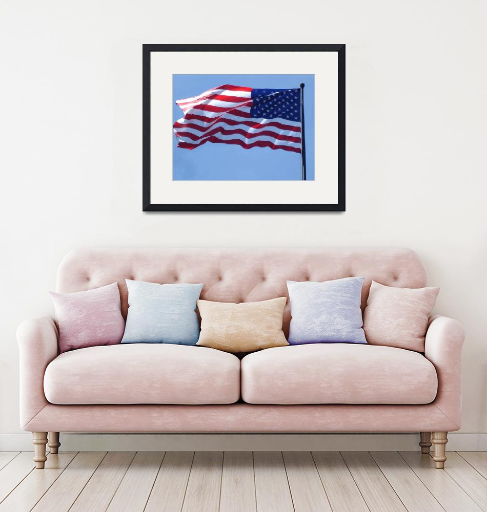 """""""American Flag at Washington DC""""  (2008) by whateverdesign"""