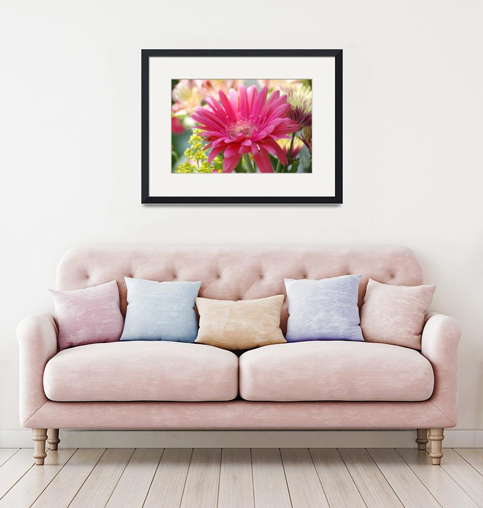 """""""pink daisy""""  by barefoot"""