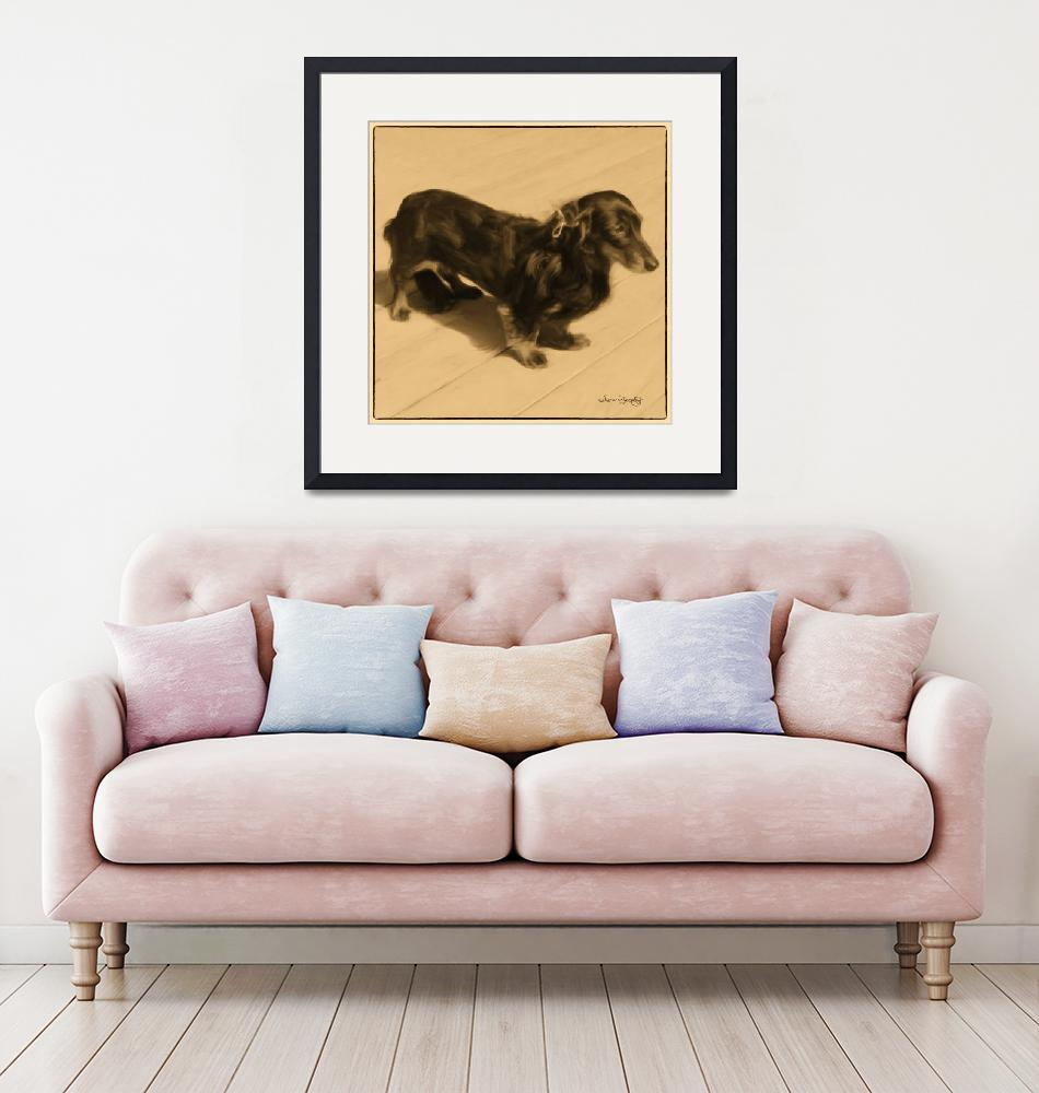"""""""DOLLED UP DACHSHUND 2""""  (2012) by shaynaphotography"""
