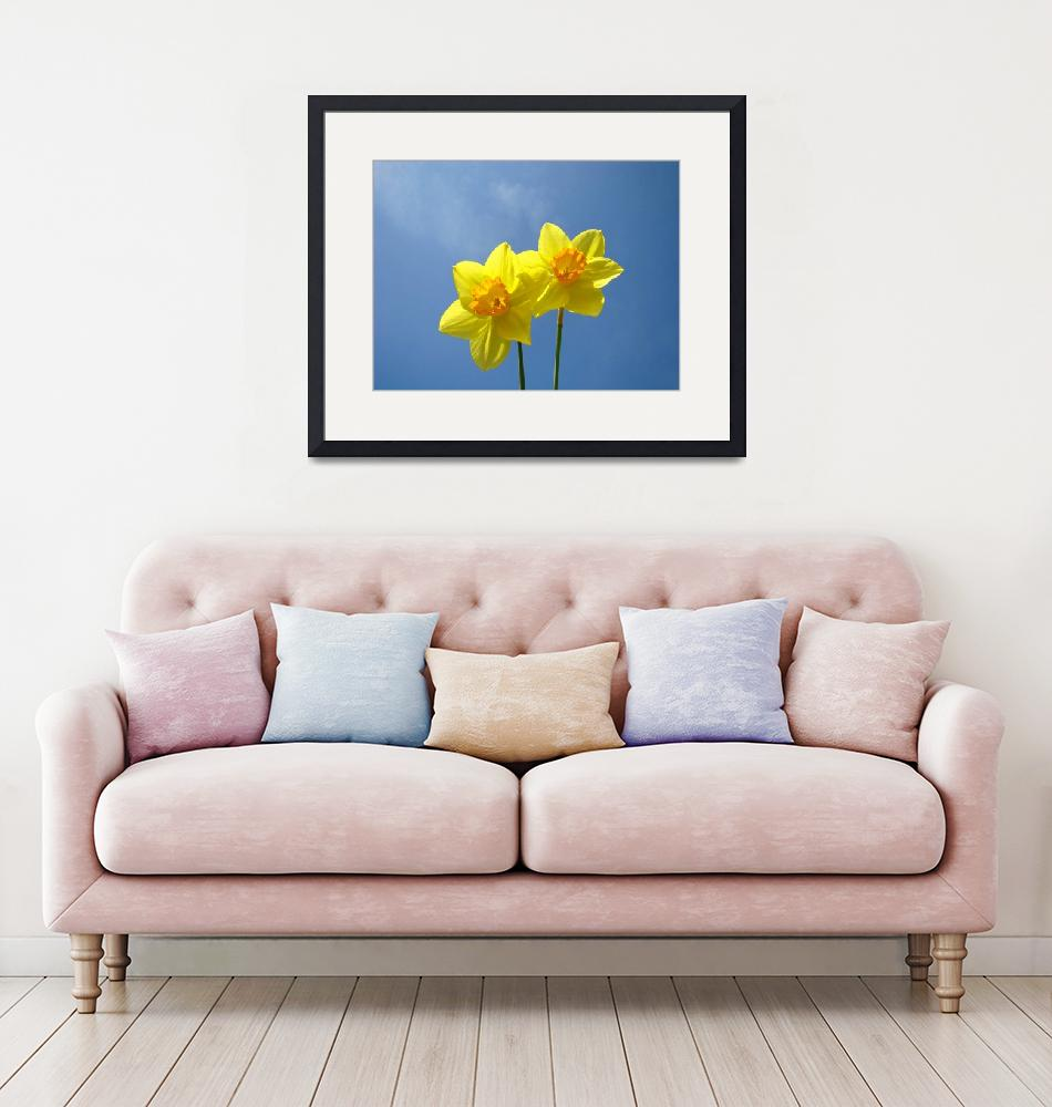 """""""Spring Daffodils Flowers Art Prints Blue Sky""""  (2014) by BasleeTroutman"""