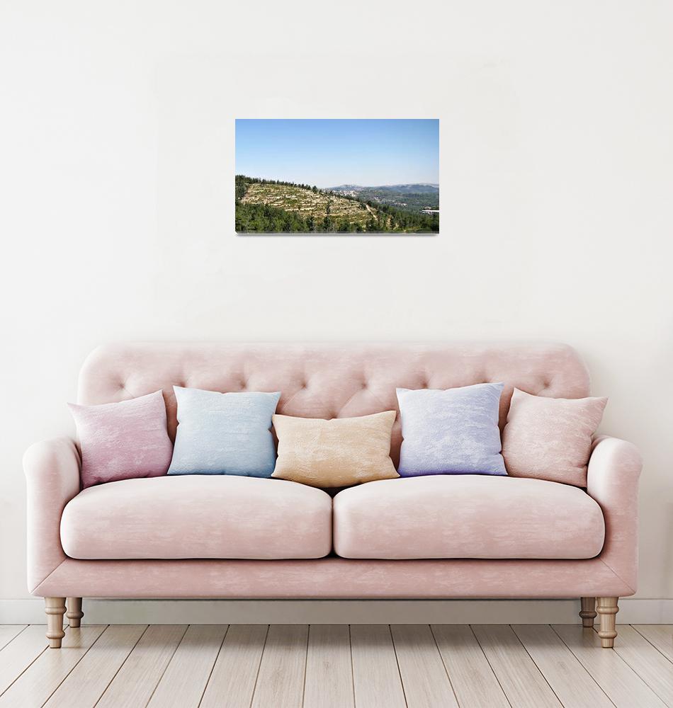 """""""Judean Hills""""  by ben-eisenberg"""
