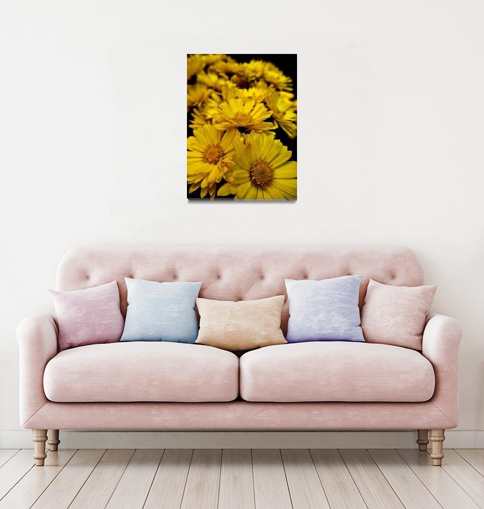 """Yellow Flowers""  (2011) by DanielK"