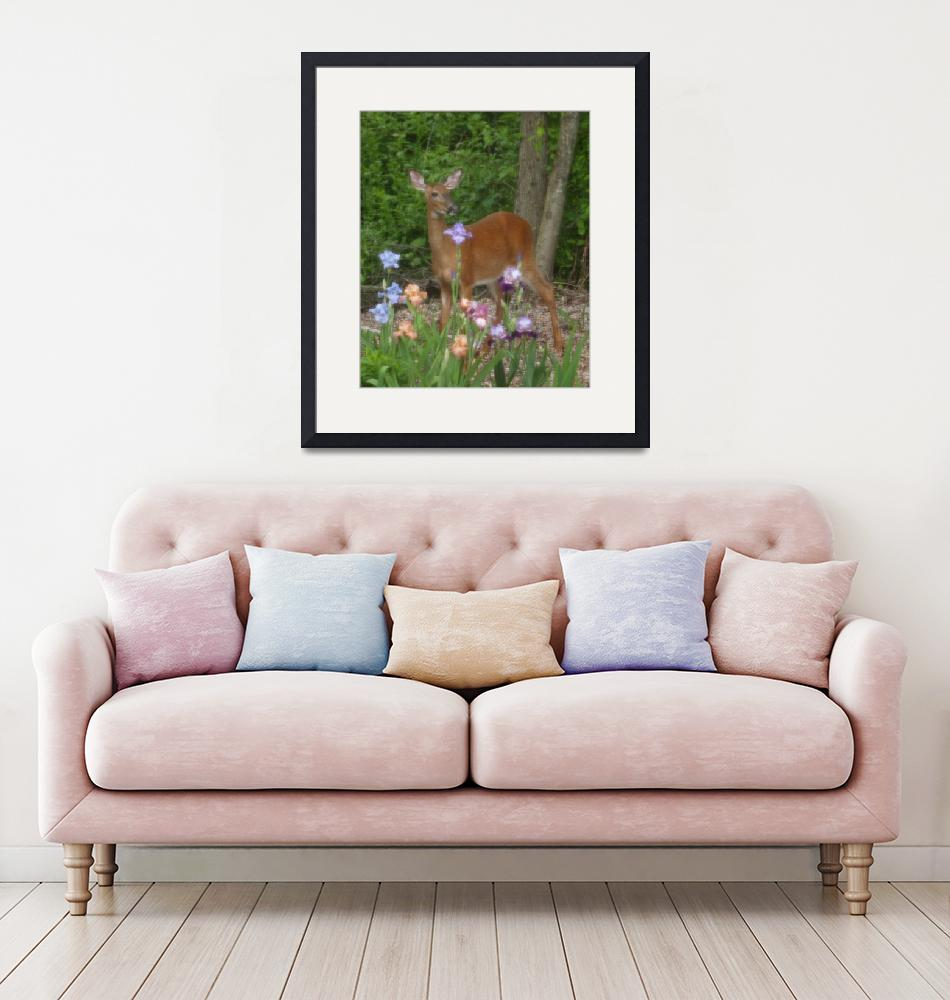 """""""A Deer Poses In Front Of Violet Flowers""""  (2007) by MikeMBurkeDesigns"""