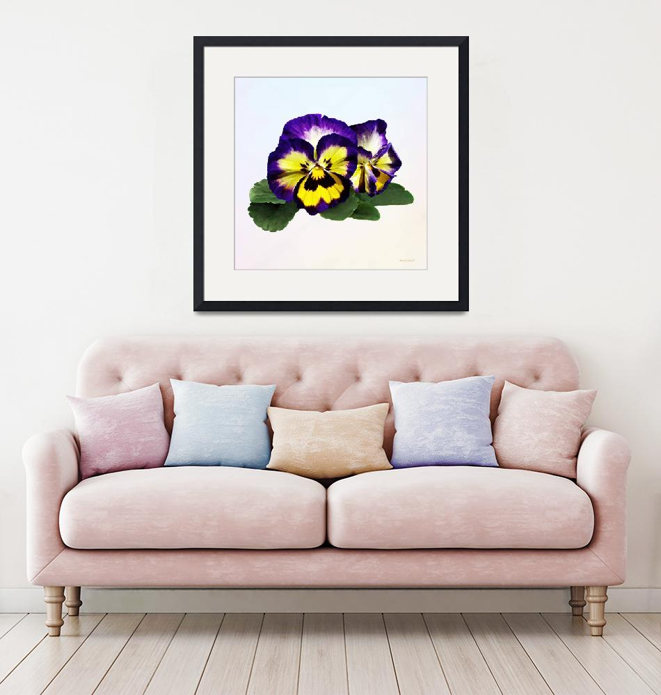 """""""Yellow Purple and White Pansies""""  by susansartgallery"""