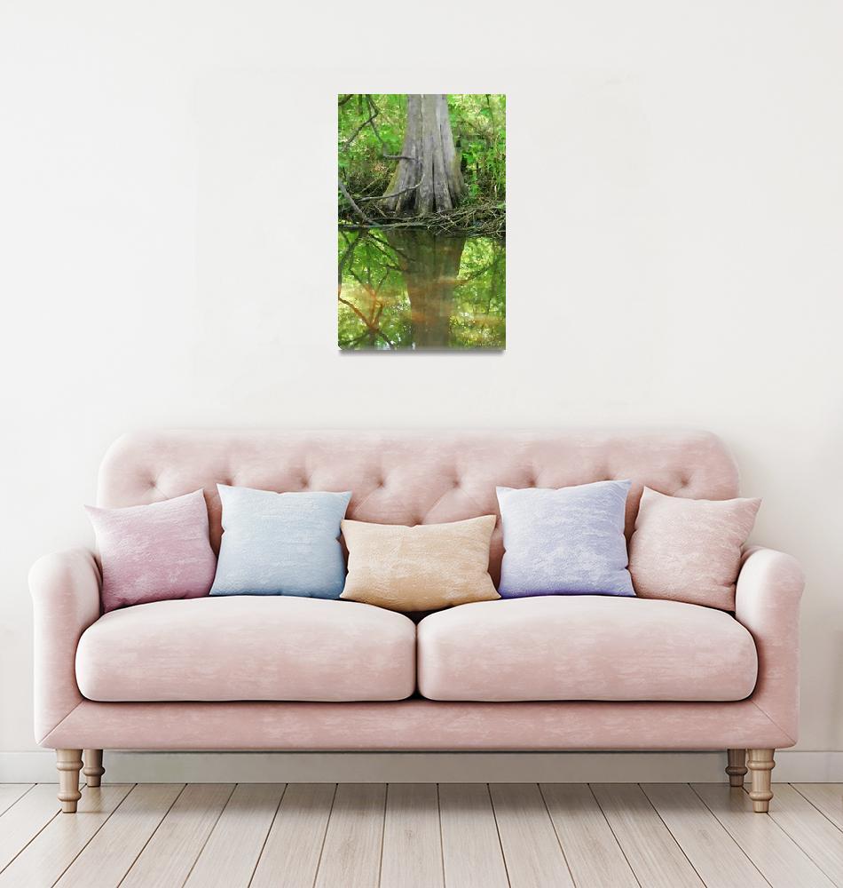 """Great Dismal Swamp Cypres painted""  (2010) by nancielaing"