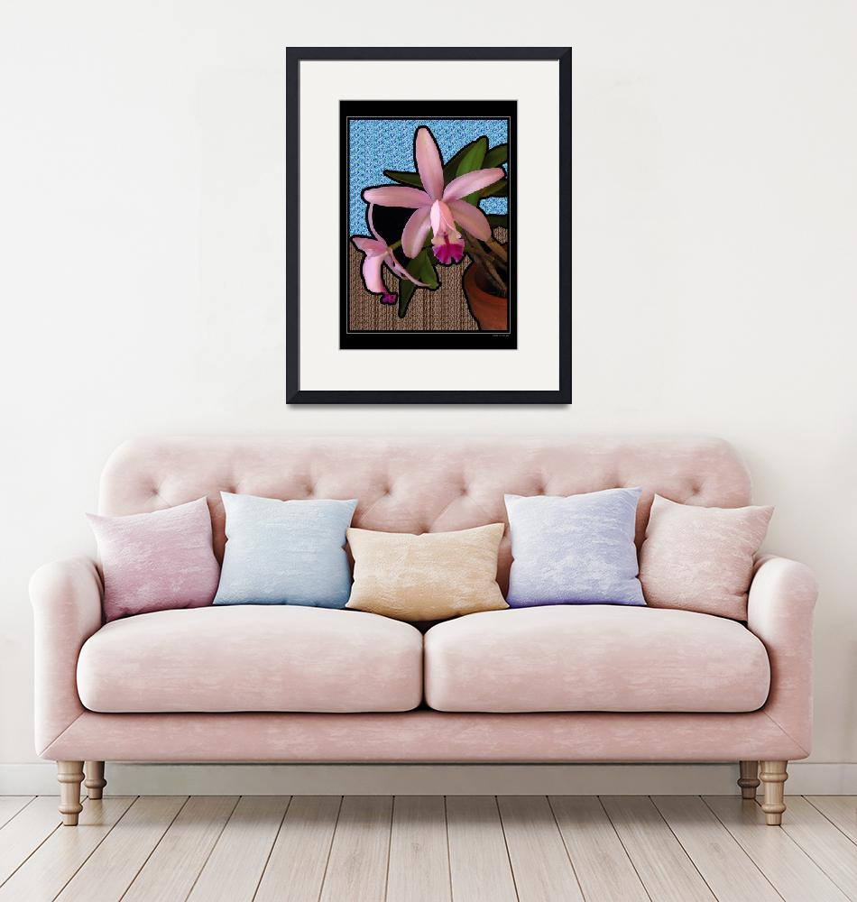 """""""Orchid Carnaval"""" (2007) by kruin"""