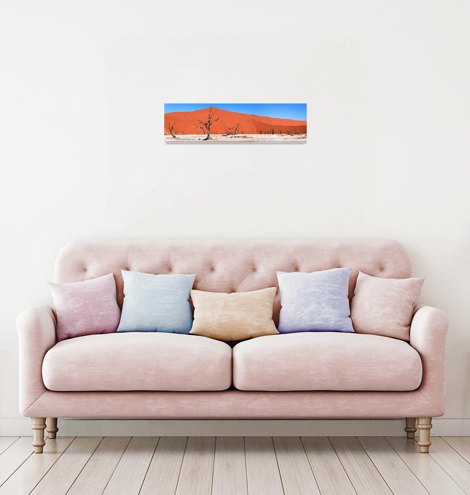 """Namib Desert, Namibia, Africa""  by DesignPics"