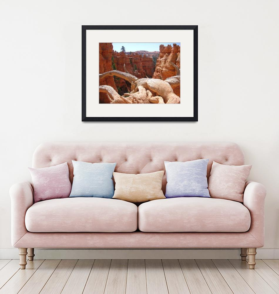 """""""Bryce Canyon""""  (2007) by rbagwell"""